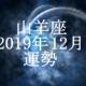 やぎ座(山羊座)2019年12月の運勢
