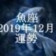 うお座(魚座)2019年12月の運勢