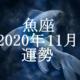 うお座(魚座)2020年11月の運勢