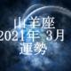 やぎ座(山羊座)2021年3月の運勢