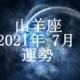 やぎ座(山羊座)2021年7月の運勢