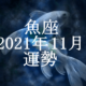 うお座(魚座)2021年11月の運勢